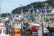 Newyln Harbour, Cornwall