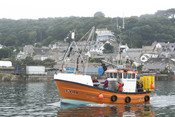 Cornish sardine boat