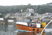 Cornish sardine boat