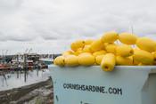 Cornish fishery