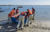 Kelp harvesters pushing boat in the water