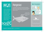 Pangasius Poissons espèces aquaculture - Fish species aquaculture
