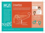 Crevettes Poissons espèces aquaculture - Shrimp Fish species aquaculture