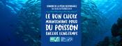 Bannières et visuels réseaux sociaux - Semaine de la Pêche Responsable 2019