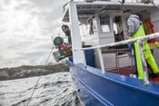 Asturian octopus fishermen