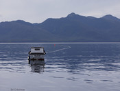 MSC AIR salmon - fishing boat with mountains