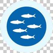 GIR 2019 impact story icons - fish
