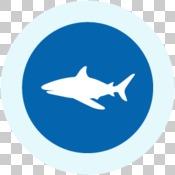 GIR 2019 impact story icons - shark