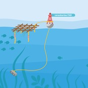 Anchored FAD illustration