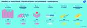 Thunfisch in Deutschland: Produktkategorien und verwendete Thunfischarten