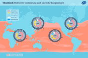 Thunfisch: Weltweite Verbreitung und jährliche Fangmengen
