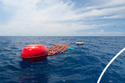 Fish aggregation device with buoy