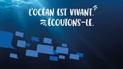 Bannières web - réseaux sociaux - Question Poisson