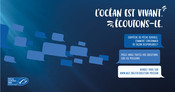 Visuels Facebook et Twitter - Question Poisson