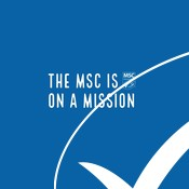 The MSC mission - LANE video, social media clip