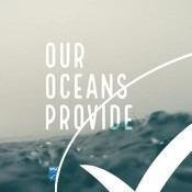 Ocean to Plate - LANE video, social media clip