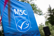 MSC flag during WOD event