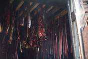 Smoked salmon hanging in smokehouse | Wild Alaska Salmon Fishery Visit, Bristol Bay