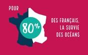 Vidéo - 10 ans MSC France - Le cercle vertueux du MSC