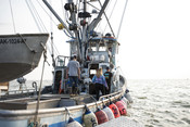 Fishing boat, tender | Wild Alaska Salmon Fishery Visit, Bristol Bay