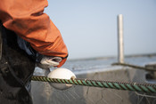 Fisherman with salmon in net | Wild Alaska Salmon Fishery Visit, Bristol Bay