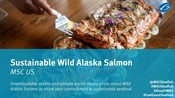 Wild Alsaka Salmon toolkit