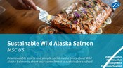 Wild Alaska Salmon toolkit