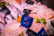 Fish on ice - fishmonger - fishcounter