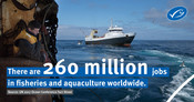 UN People / Jobs statistic: #OceanLives