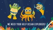 Educational Material for Wild Ocean Explorers - Social media content