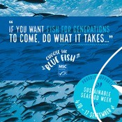 Sustainable Seafood Week Print Ad