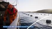 Sustainable Seafood Week Video