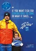 Sustainable Seafood Week Hake Poster