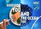 General Campaign Graphics - Good for you and the ocean too campaign 2020