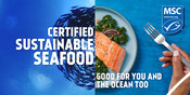 Digital and Print Billboard Creative - Good for you and the ocean too campaign 2020