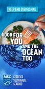 Display / Banner ad creative - Good for you and the ocean too campaign 2020