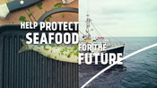 :30 sec spot for TV broadcast - Good for you and the ocean too campaign 2020