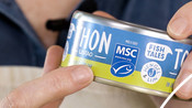 MSC Ecolabel on tinned tuna product