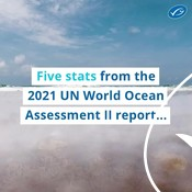 Wochit: April 2021 UN World Ocean Assessment II Social