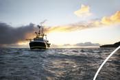 bateau de pêche à la sardine de Cornouailles au coucher du soleil