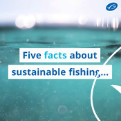 Wochit: 5 Facts about sustainable fishing...
