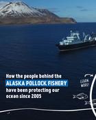 Alaska Pollock - Social Media Carousels for World Ocean Day, Phase 2