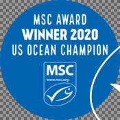 Badges & Stickers for MSC partner 2020 US Ocean Champion awards