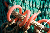 Net trawling equipment loops