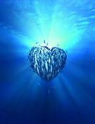 Heart CGI