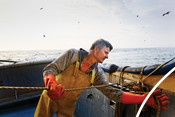 Fisherman tying rope trawling north sea