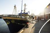Ocean-Vision_Peterhead-Harbour