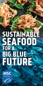 Static Digital Ad - salmon cracker - National Seafood Month Partner Resources