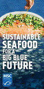 Static Digital Ad - Salmon - National Seafood Month Partner Resources