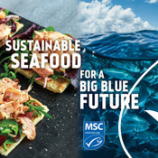 Social Media Post - salmon, wave - National Seafood Month Partner Resources